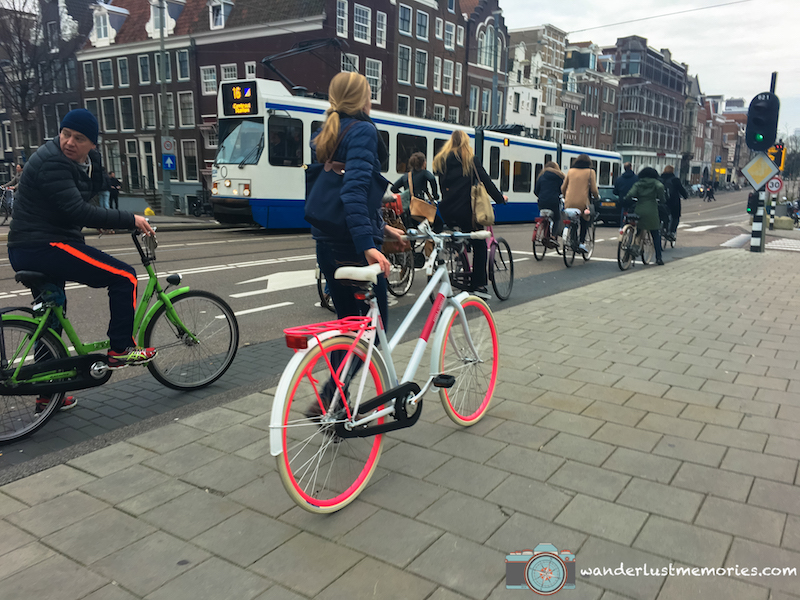 Amsterdam Bici