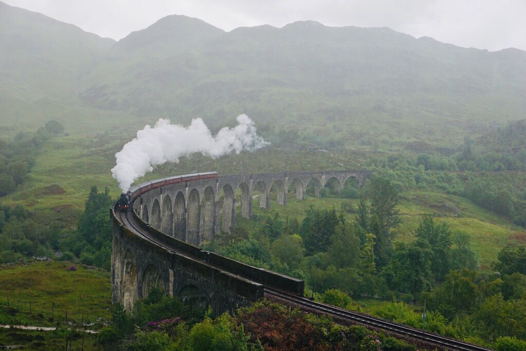 tren harry potter jacobite